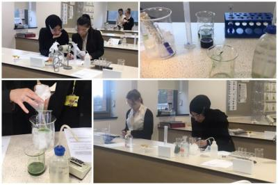 Weedkilling In The Lab!