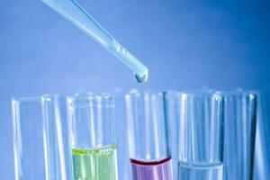STEM Students enjoy Pharmaceutical Visit