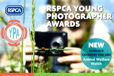 RSPCA Young Photographer Competition