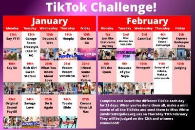 TikTok Challenge!