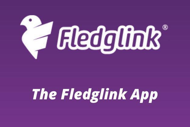 Introducing Fledglink