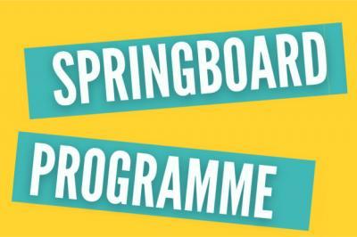 The Springboard Programme